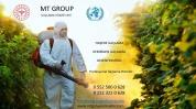 MT GROUP İLAÇLAMA & BACA TEMİZLEME HİZMETLE