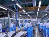 Irmak Gıda Üretim ve Paketleme